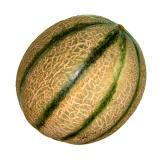 "Melone "" Gialetto""  ca. 2  kg"