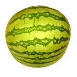 Melone Wassermelone mini ca. 2 kg