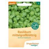 Saatgut Kräuter Basilikum mittelgroßblättrig