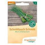 Saatgut Kräuter Schnittlauch