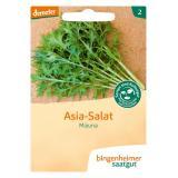 Saatgut Asia Salat