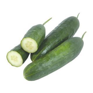 Gurke Landgurken