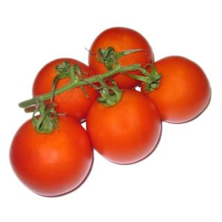 Tomate  Strauchtomate