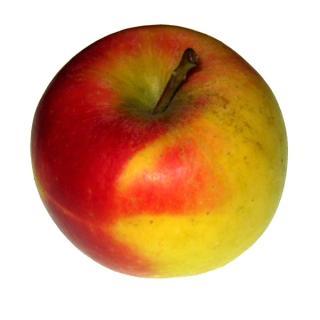 """#Apfel d. Woche: """" Jonagold """""""