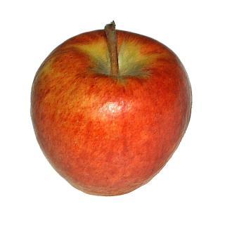 """Apfel """" Ananasrenette """" regio alte Sorte säuerlich"""