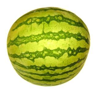 Melone Wassermelone klein ca 1,6 kg