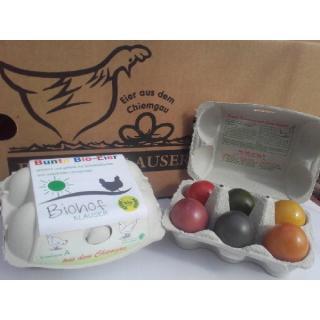 Eier Ostereier gekocht gefärbt 6er *NEU*