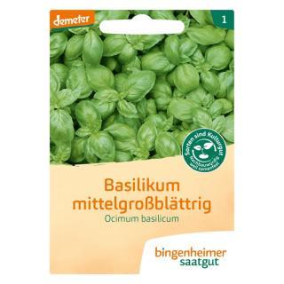 Saatgut Kräuter Basilikum *NEU*