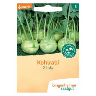 Saatgut Kohlrabi weiß Noriko *NEU*